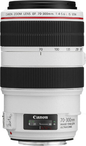 Canon EF 70-300mm f/4-5.6L IS USM #2