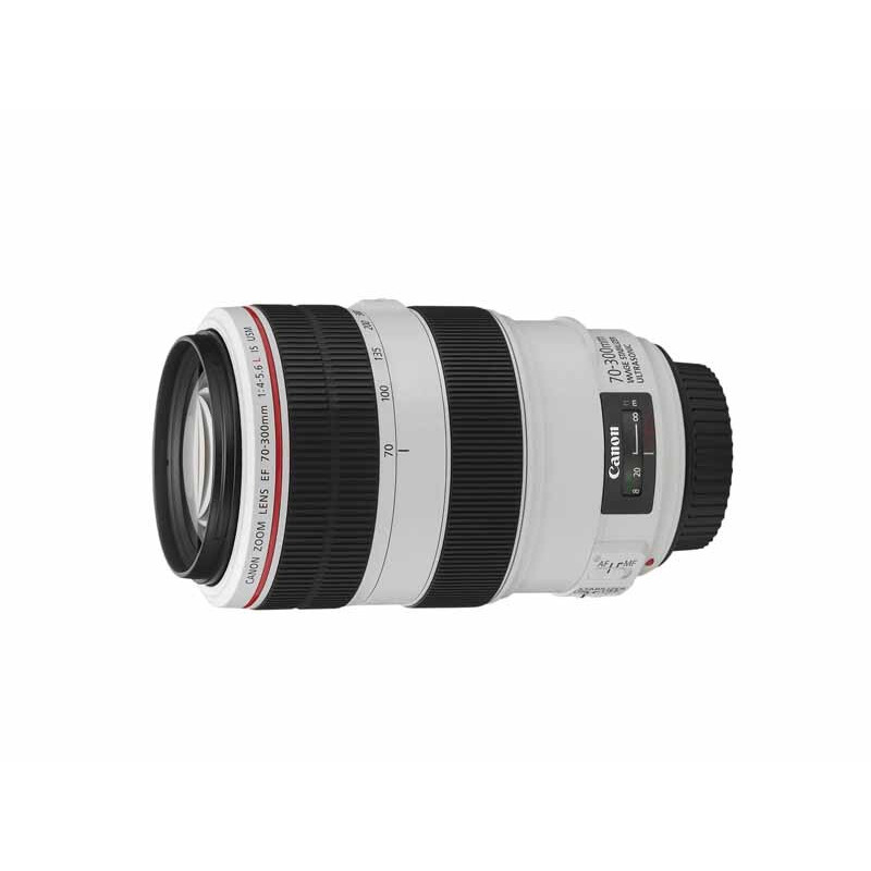 Canon EF 70-300mm f/4-5.6L IS USM #1